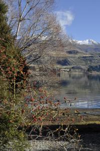 Luxury on Lansdown, Apartmanok  Wanaka - big - 22