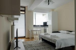 Exclusive Residence by the Park A15, Apartmány  Iaşi - big - 13