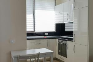 Exclusive Residence by the Park A15, Apartmány  Iaşi - big - 14