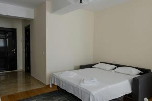 Exclusive Residence by the Park A15, Apartmány  Iaşi - big - 21