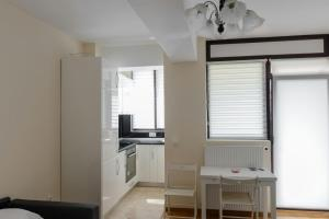 Exclusive Residence by the Park A15, Apartmány  Iaşi - big - 26