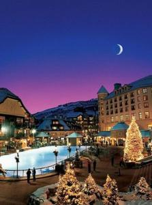 Mlk/Spring Break Condo, Апартаменты  Beaver Creek - big - 1