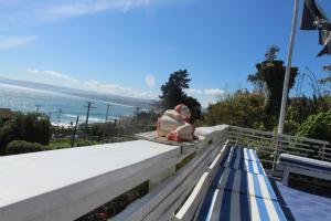 Lezaeta Bed and Breakfast, Bed & Breakfast  Algarrobo - big - 34