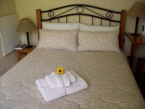 Sunflowers Guesthouse, Penziony  Kempton Park - big - 3