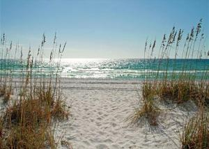 Sails and Trails, Holiday homes  Seagrove Beach - big - 16