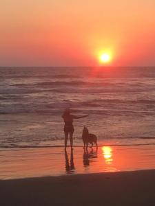 Great Sunsets in Acapulco, Дома для отпуска  Акапулько-де-Хуарес - big - 25