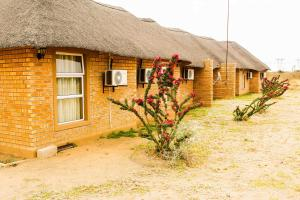 Madiba Inn, Bed & Breakfasts  Mahalapye - big - 12