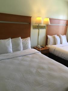 Deluxe Double Room with Extra Bed - Non-Smoking