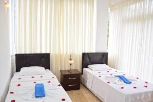 Lilac 1 Apartment, Apartmanok  Oludeniz - big - 4