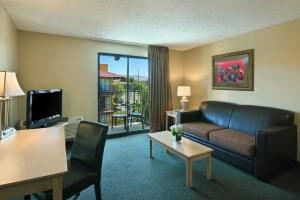 Extended Stay Queen Suite with View