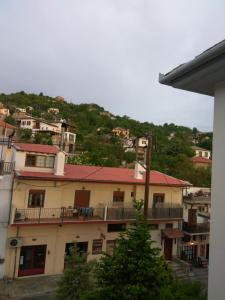 Guesthouse Papagiannopoulou, Apartments  Zagora - big - 101