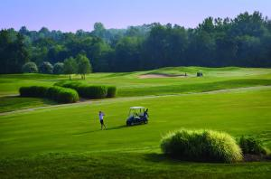 Embassy Suites Charlotte - Concord/Golf Resort & Spa, Hotely  Concord - big - 54