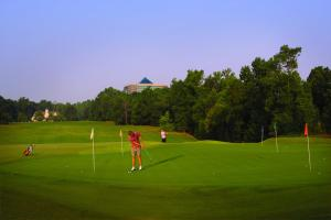 Embassy Suites Charlotte - Concord/Golf Resort & Spa, Hotely  Concord - big - 52