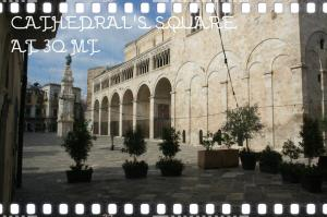 B&B Il Grifone, Bed and Breakfasts  Bitonto - big - 14