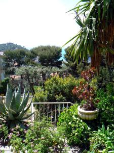Superbe appartement villa Nice / Villefranche, Apartments  Nice - big - 19