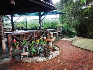 Dreamhome, Privatzimmer  Chiang Dao - big - 37
