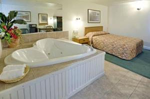 Queen Suite with Hot Tub