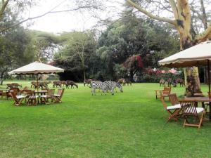 Photo of Lake Naivasha Country Club