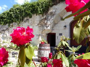 Les Troglos de Beaulieu, Bed and Breakfasts  Loches - big - 42