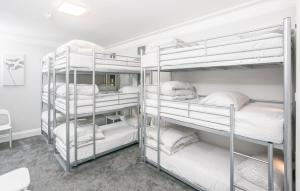Bunk Bed in a 9 bed Mixed Dormitory Room
