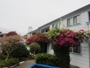 Photo of Quality Inn Monterey