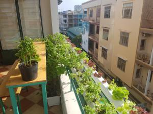 Winter Spring Homestay, Apartmány  Can Tho - big - 42