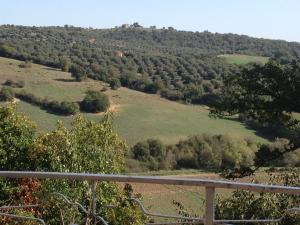 Le Tartarughe B&B, Bed & Breakfasts  Magliano in Toscana - big - 25