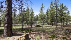 Crag 10 Holiday Home, Holiday homes  Sunriver - big - 27