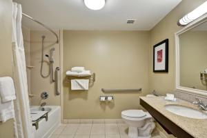 One King Access Room with Bath Tub