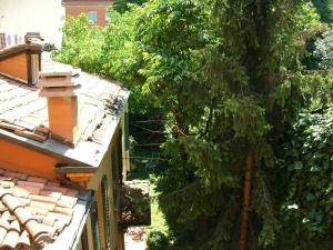 Nice Apartments in Downtown - AbcAlberghi.com