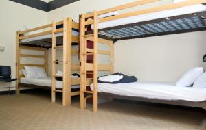 Premium 4-Bed Female Dormitory