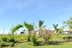 Photo of Namuka Bay Resort