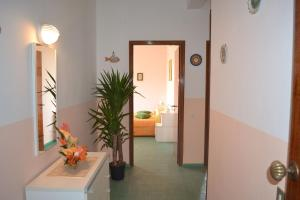 Mira Amalfi, Apartments  Agerola - big - 5