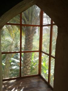 Photo of Misfah Old House