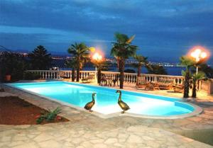Photo of Apartments Villa Palme
