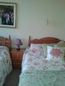 Four Winds Lodge, Bed and breakfasts  Galway - big - 7