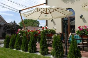 Hotel Ana Inn, Hotels  Arad - big - 30