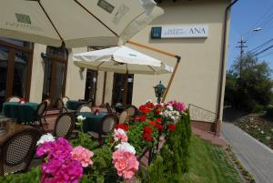 Hotel Ana Inn, Hotels  Arad - big - 31