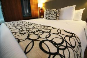 Queen Room with Two Double Beds