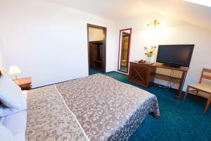 Hotel Ana Inn, Hotels  Arad - big - 6