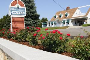 Photo of Blue Spruce Motel & Townhouses
