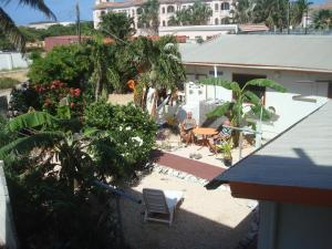 Palm Apartments Aruba