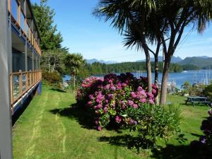 Photo of Tofino Motel Harbourview