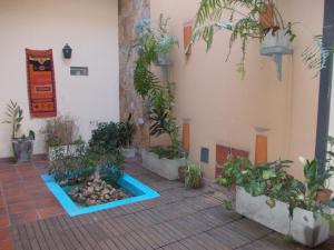 Hostel Sol de Oro photo 2