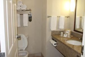 Holiday Inn Express Hotel & Suites New Iberia-Avery Island - New Iberia, LA 70560 - Photo Album