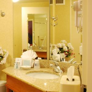 Double Room with Roll-in Shower - Disability Access/Non-Smoking