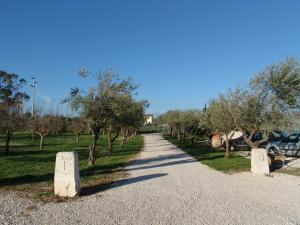 Podere 1248, Aparthotels  Ladispoli - big - 19