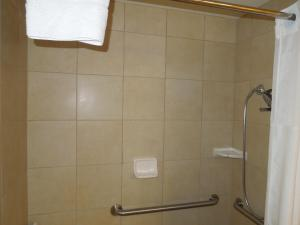 King Room with Roll in Shower