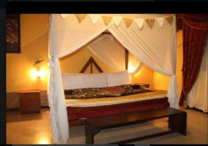 Titie Hotels room photos