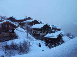 Appartement Kalinka 603 - Apartment - La Tania - Exterior - Winter